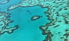 A Grande Barreira de Corais é um dos ecossistemas mais ameaçados do mundo por causa das mudanças climáticas, mas estava ausente de relatório a pedido do governo da Austrália Foto: SARAH LAI / AFP