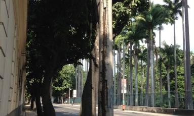 Poste com sinais de falta de manutenção na Rua Jardim Botânico Foto: Foto enviada pela leitora Lilian Affonso para o WhatsApp do Globo / Eu-Repórter