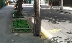 Poste fica na Rua Cupertino Durão, no Leblon Foto: Foto do leitor Jose Valentin