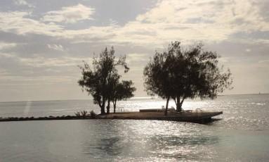 Árvores marcam o limite entre a piscina de um resort e o oceano Foto: Léa Cristina / Léa Cristina