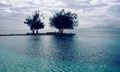 Árvores marcam o limite entre a piscina de um resort e o oceano Foto: Léa Cristina