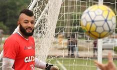 Muralha deve continuar no gol do Flamengo contra o Vitória, quinta-feira Foto: Divulgação