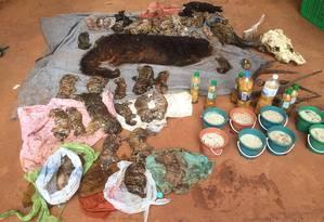 O templo foi fechado na segunda-feira. Os monges ainda não se manifestaram sobre os filhotes mortos Foto: Department of National Parks, Wildlife and Plant Conservation / AP