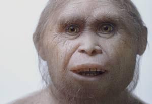 Reconstrução do rosto de um exemplar de Homo floresiensis pelo Atelier Elisabeth Daynes, no Museu do Sítio Arqueológico de Sangiran, na Indonésia Foto: Kinez Riza / AP