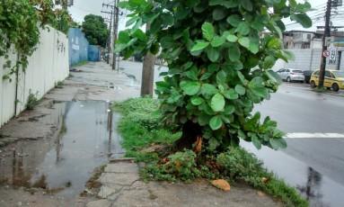 Os buracos com água na calçada da Rua Prefeito Olímpio de Melo Foto: Leitora Silvana Machado / Eu-Repórter