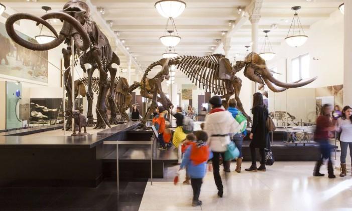 Museu Americano de História Natural, noUpper West Side, em Manhattan Foto: Marley White / NYC&Company/Divulgação