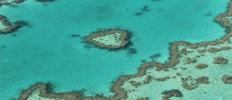 Recife em forma de coração na Grande Barreira de Corais, na Austrália Foto: Léa Cristina / O Globo