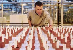 O cientista Wieger Wamelink, da Universidade de Wageningen, na Holanda, inspeciona vegetais plantados em solo similiar ao de Marte Foto: JOEP FRISSEL / AFP