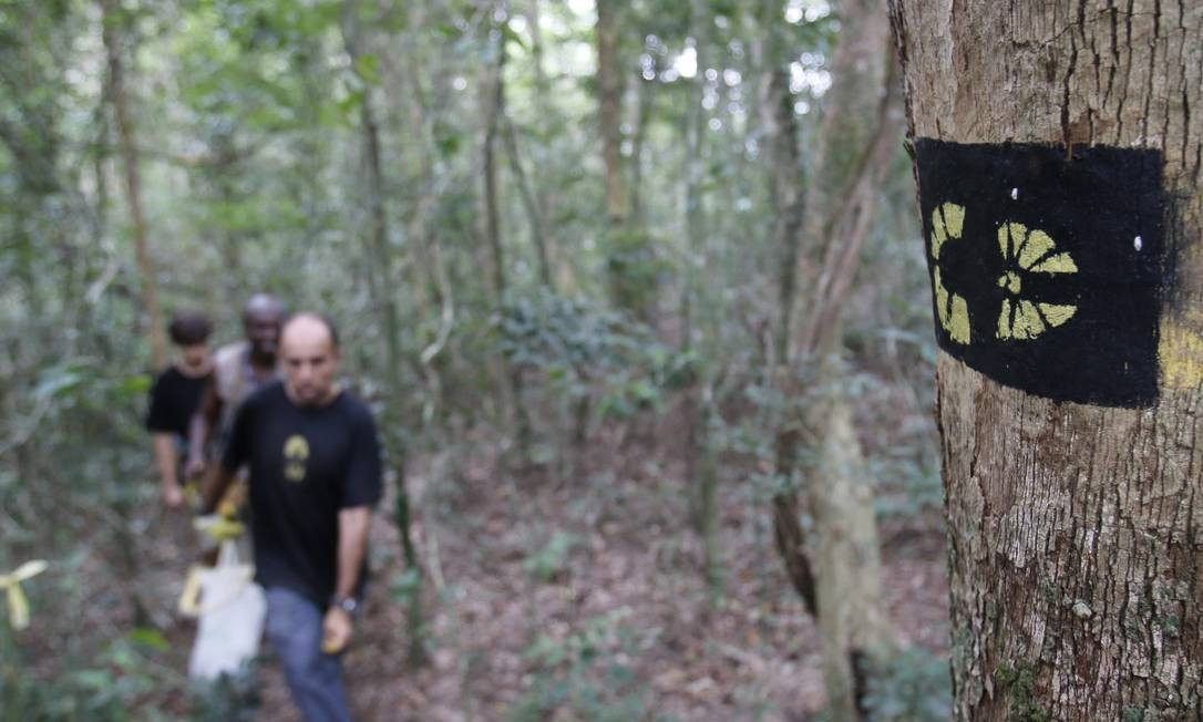 Pedro Cunha e Menezes percorre trecho da Trilha Transcarioca Foto: Reginaldo Pimenta / Agência O Globo
