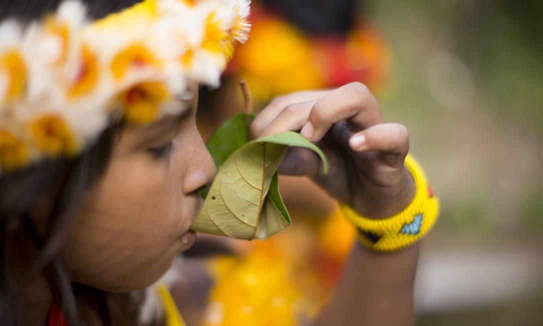 A aldeia Wasare, da tribo Parecis, em Campo Novo do Parecis Foto: Márcia Foletto / Agência O Globo