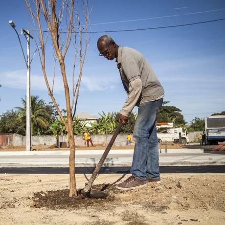 Mais verde. Funcionário da prefeitura ajeita a terra para dar segurança a uma das 30 novas plantas do local Foto: Hermes de Paula