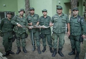 Parte do grupamento com uma jiboia capturada no Engenho do Mato, bairro próximo à Serra da Tiririca Foto: Divulgação/guarda municipal