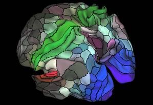 Ilustração do estudo mostra algumas das 360 regiões identificadas nos dois hemisférios do cérebro humano: em tons de vermelho, estão as ligadas à audição; já em tons de verde, as associadas ao tato; em tons de azul, as envolvidas na visão Foto: Divulgação/Nature/Matthew F. Glasser/David C. Van Essen
