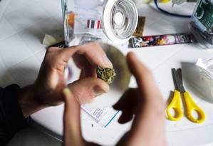 A cidade de Hugo proíbe o cultivo, processamento, experimentos e comércio da maconha, apesar da legalização no estado do Colorado Foto: Matilde Campodonico / AP