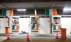 Cavalos do CCE (Concurso Completo de Equitação) chegam A Deodoro para os Jogos Foto: Gabriel Nascimento / Rio2016