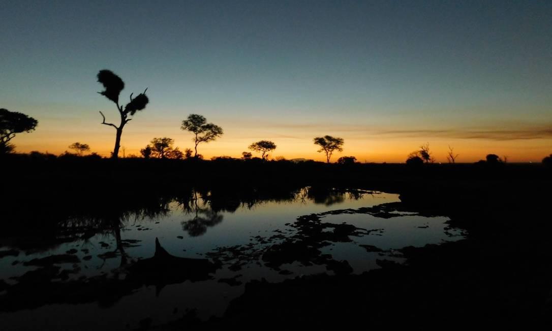 Paisagem de tirar o fôlego: a savana sul-africana num fim de tarde Foto: Ludmilla de Lima / O Globo