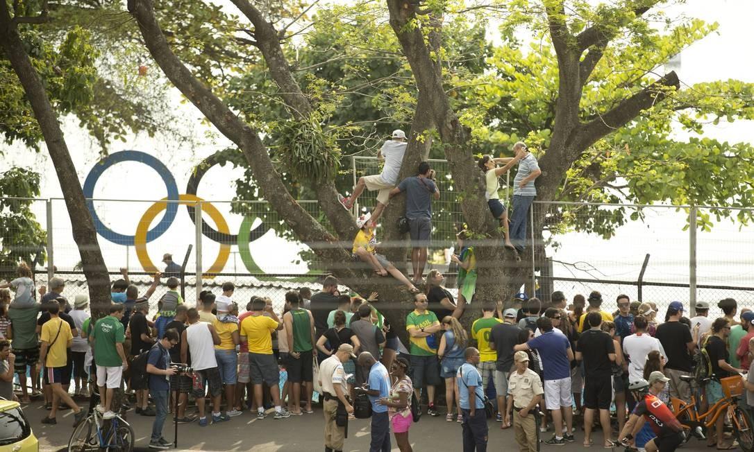 Até na árvore: público lota entorno da Lagoa para ver nossos heróis da canoagem Foto: Márcia Foletto / O Globo