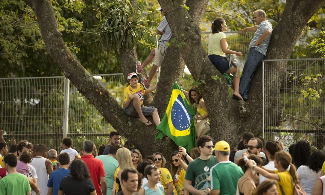 Até subir em árvore para ter uma vista privilegiada Márcia Foletto / Agência O Globo