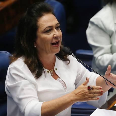 A senadora Kátia Abreu (PMDB-TO) Foto: Ailton Freitas / Agência O Globo