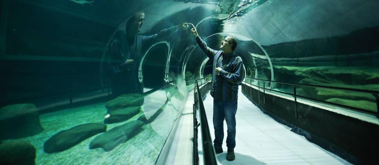 O túnel que passa por dentro do tanque de 3,5 milhões de litros d'água e 7 metros de profundidade Foto: Guilherme leporace / Agência O Globo
