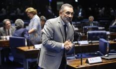 O senador Telmário Mota (PDT-RR) Foto: Agência Senado