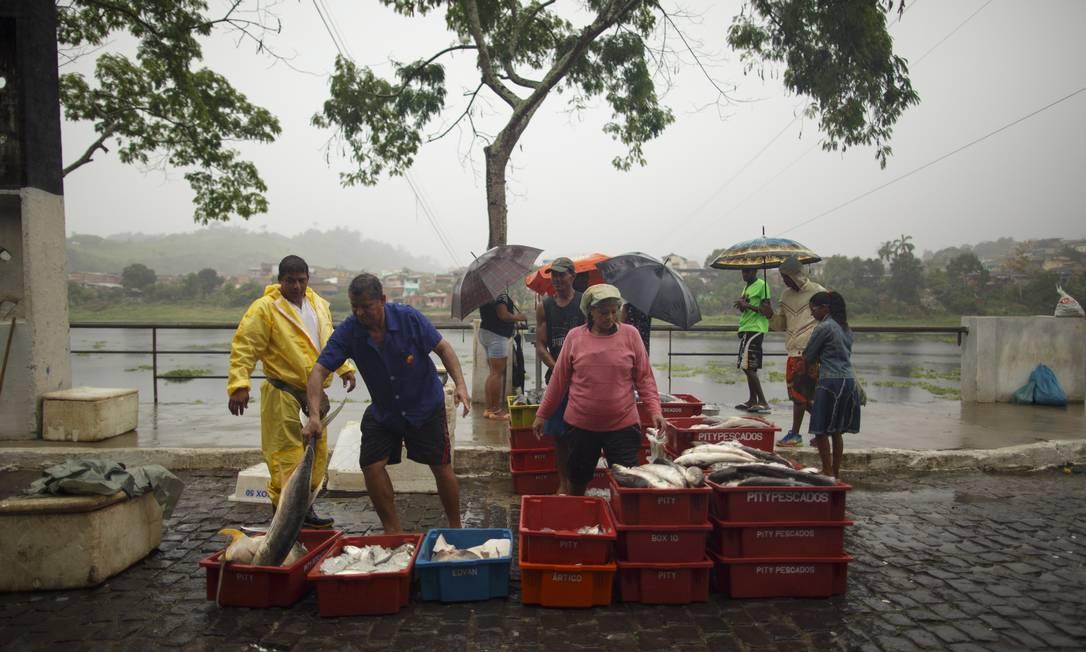 O peixe fresco à venda no sábado, dia de feira em Ubaitaba Daniel Marenco / Agência O Globo