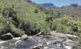 Parque Nacional do Itatiaia: agrotóxico ameaça região preservada
