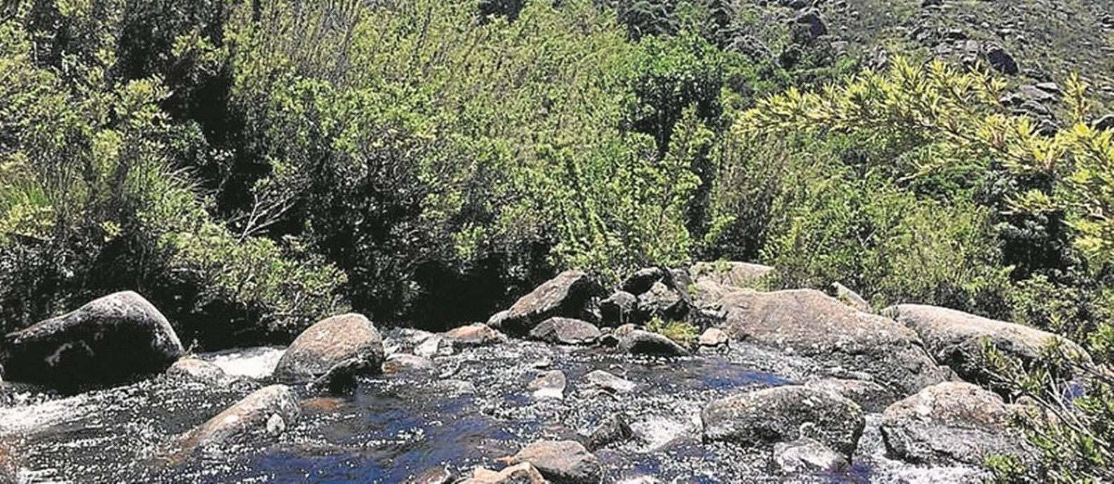Parque Nacional do Itatiaia: agrotóxico ameaça região preservada Foto: Ana Lucia Azevedo