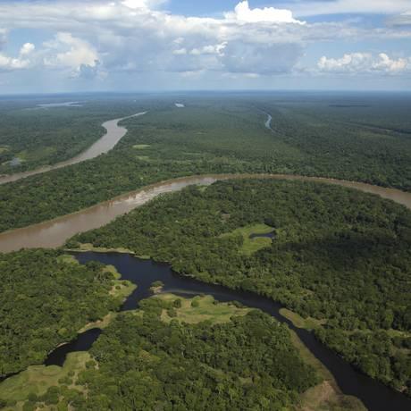 Governo brasileiro se comprometeu a zerar o desmatamento na Amazônia Legal Foto: Antonio Scorza / Agência O Globo