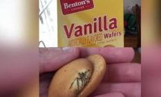 Aranha estava assada junto com a massa do biscoito de baunilha Foto: Reprodução do Twitter