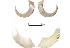 Pares de anzóis encontrados na caverna de Sakitari Foto: Reprodução / Proceedings of the National Academy of Sciences of the United States of America