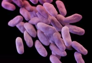 Ilustração mostra um grupo de bactérias resistente a medicamentos Foto: Melissa Brower / AP