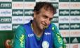 O Palmeiras, do técnico Cuca, assegurou a liderança da Série A do Brasileiro por mais uma rodada, após vitória sobre o Coritiba Foto: Divulgação / Palmeiras
