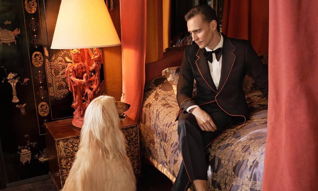 Tom Hiddleston para Gucci Foto: Glen Luchford/Divulgação