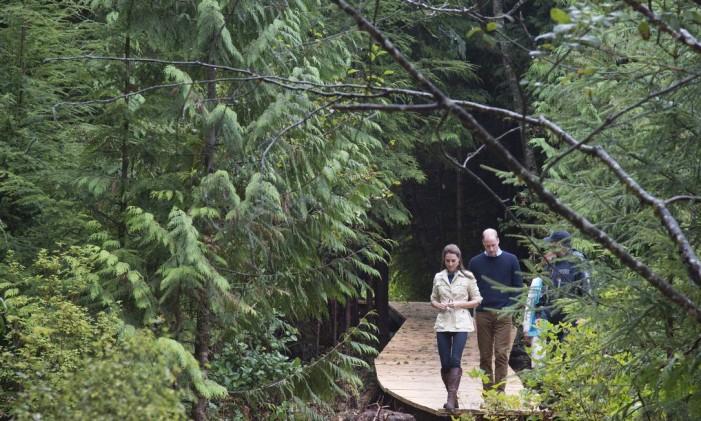 William e Kate caminham na floresta temperada Great Bear, em Bella Bella, British Columbia Foto: Jonathan Hayward / The Canadian Press via AP
