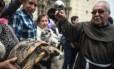Até mesmo uma tartaruga foi levada para ser abençoada