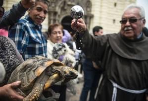 Até mesmo uma tartaruga foi levada para ser abençoada Foto: ERNESTO BENAVIDES / AFP