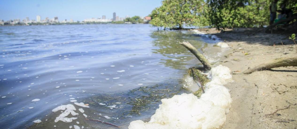 Vestígios da espuma amarela na Lagoa Rodrigo de Freitas ainda podem ser vistos na altura da Hípica Foto: Analice Paron / Agência O Globo