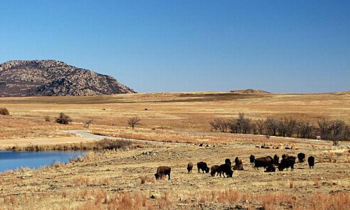 Interior rural de Oklahoma Foto: Tallgrass nature reserve/Divulgação