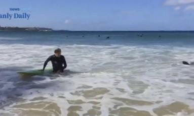 Surfista sai da água após ser atacado por foca em praia de Sydney Foto: Reprodução / Manly Daily