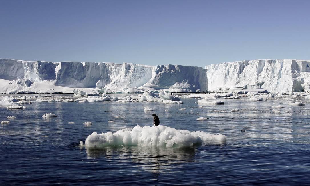 Pinguim sobre bloco de gelo na Antártica. O aumento da intensidade do derretimento das calotas polares é uma das consequências do aquecimento global Foto: Pauline Askin 23/01/2010 / Reuters