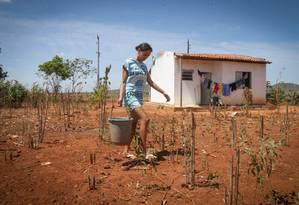 Em Ribeirópolis (SE), onde a Câmara aprovou um salário de R$ 30 mil para o prefeito, Milena Roberta Goes e sua família vivem as privações causadas pela falta crônica de água Foto: Marcos Alves