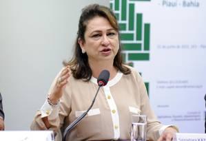 A relatora da Comissão que analisa os supersalários, senadora Kátia Abreu (PMDB-TO) Foto: Lucio Bernardo Jr 02/06/2016 / Câmara dos Deputados