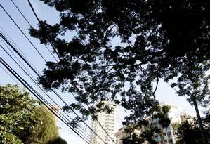 Fiação da Enel Distribuição Rio, antiga Ampla, em Niterói Foto: Felipe Hanower/11-6-2013