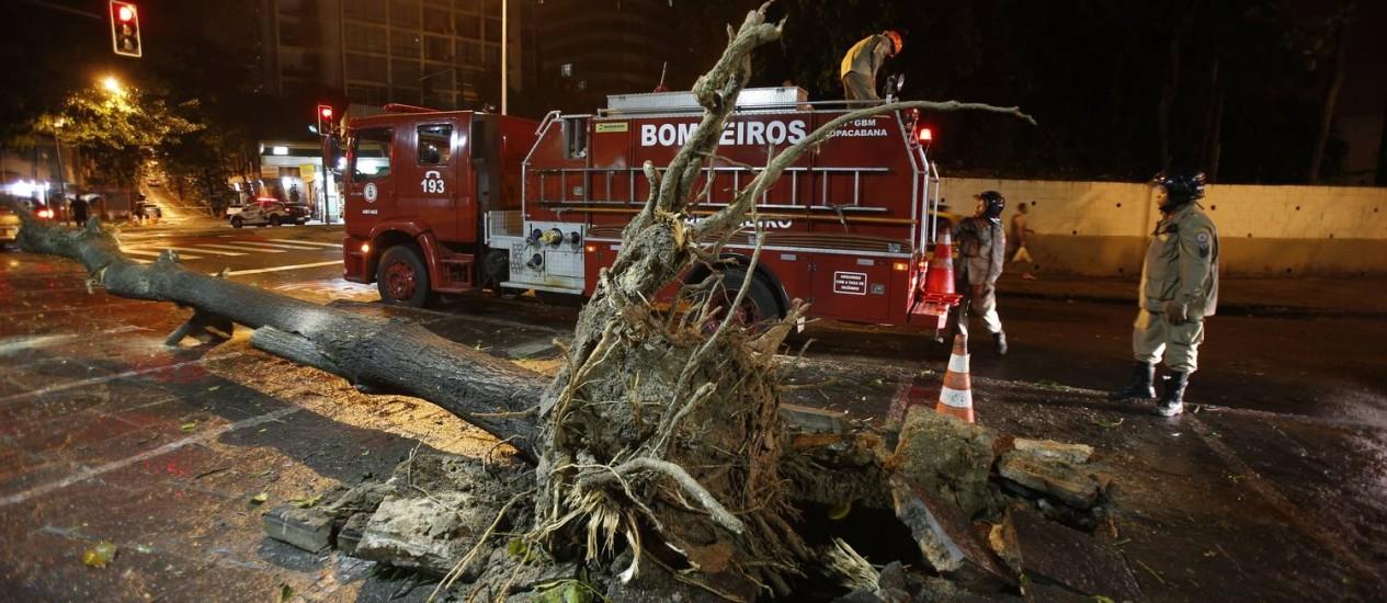 Árvore caída na Praça Cardeal Arco Verde, em Copacabana Foto: Alexandre Cassiano / Agência O Globo