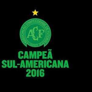 Campeã Sul-Americana 2016 Foto: Reprodução