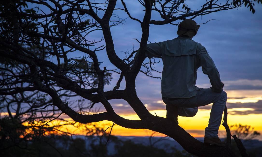 Ambientalista observa a paisagem do Cerrado Hermes de Paula / Agência O Globo