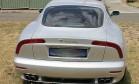 Estudante gasta R$ 5,3 milhões com carros, strippers e droga após erro de banco Foto: Divulgação/NSW Police