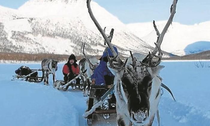 Ártico Foto: Eduardo Maia