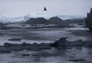 A região do Ártico registrou temperaturas recorde, com derretimento extenso das camadas de gelo e neve Foto: Evan Vucci / AP
